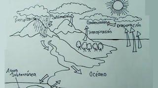 Ciencias Naturales 1/5 - Cómo dibujar el Ciclo del Agua paso a paso