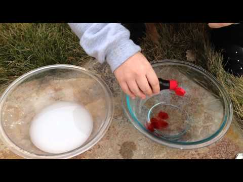 OLOL 5th Grade Science Project: Baking Soda Volcano