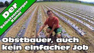 Obstbauer, auch kein leichter Job