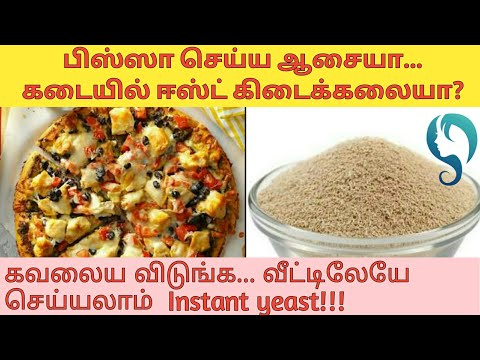 how-to-make-yeast-for-pizza/burger/bread-at-home|tara's-tamil-care