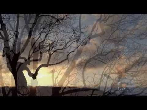 Greeknap - mandoline mélodie ( Grèce )  - par Jean-Luc Genin