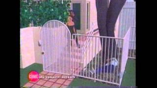 OJ Simpson Murder Trial Animation - HD from original source