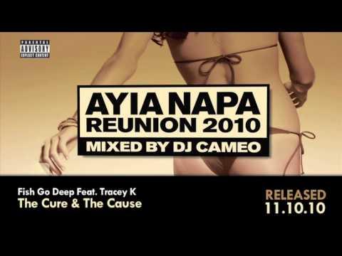 Ayia Napa Reunion 2010 mixed by DJ Cameo Mega Mix  (Ministry of Sound)