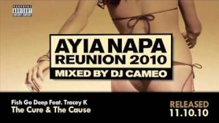 Ayia Napa Reunion 2010 mixed by DJ Cameo Mega Mix  (Ministry of Sound)