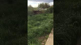 Аренда  Московская область, Рузский городской округ, поселок Дорохово, Полевой переулок
