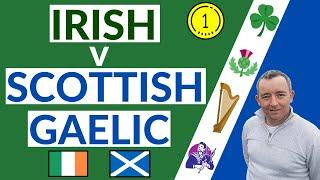 I Compare Irish & Scottish Gaelic