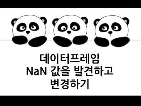 [Pandas 강의] NaN (None) 찾아서 다른 값으로 변경하기(fillna)