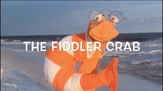 The Fiddler Crab (He Don't Play The Fiddle) by Huck & Lilly