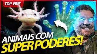 ESSE ANIMAL REGENERA QUALQUER PEDAÇO DO CORPO! | RICHARD RASMUSSEN