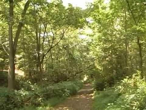 Rails To Trails In Central Pennsylvania (Season 1.10)