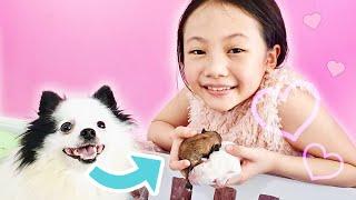 Bug's Pregnant Dog Birth Story