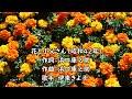 花と小父さん(伊東きよ子)昭和42年