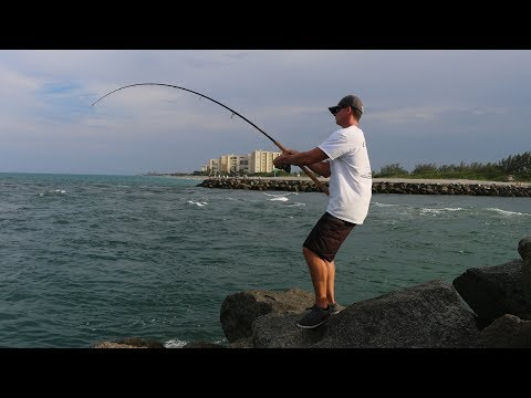 Best Snook Fishing Spots REVEALED???? (Juno Pier Snook Fishing)