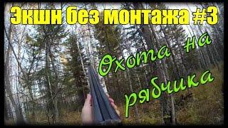 Охота на рябчика с Русским спаниелем