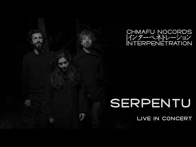 Serpentu @ Interpenetration 1.8.4