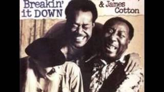 Muddy Waters, Johnny Winter & James Cotton - Dealin With The Devil