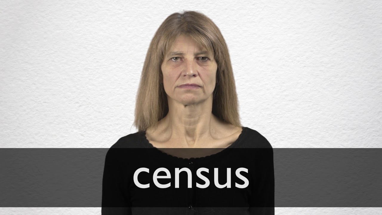 """French Translation of """"census"""" 