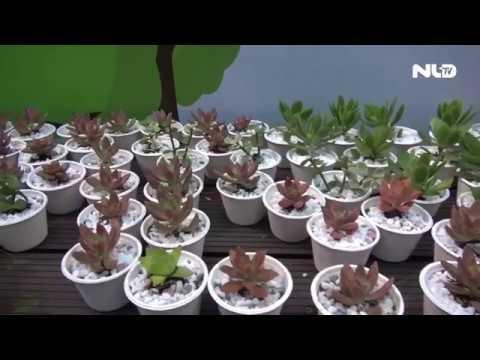 Báo Sài Gòn Tiếp Thị: Đổi rác điện tử lấy cây xanh