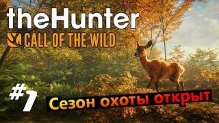 the hunter call of the wild #1 Сезон охоты открыт (суппер трофеи )
