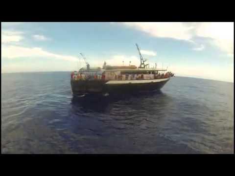 Dolphin dock inc deep sea fishing trip port aransas texas for Port aransas deep sea fishing