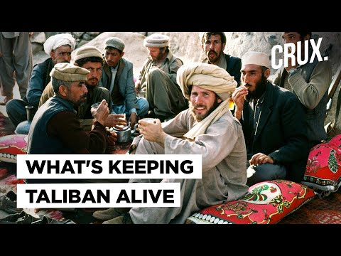 Taliban Factsheet: How The Afghan Extremists Get Money & How Much Ground Support They Really Have