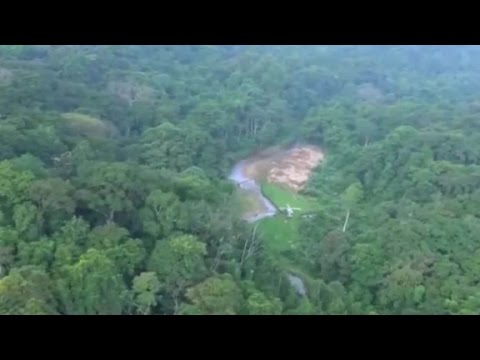 'Lost city' revealed in jungles of Honduras