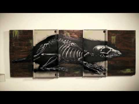 ROA street artist profile film by filmmaker Colin M Day - Warholian