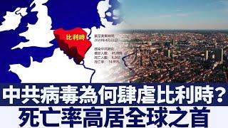 死亡率高居全球之首 中共病毒為何肆虐比利時?|新唐人亞太電視|20200426