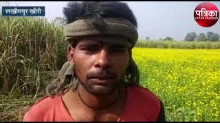 Lakhimpur के किसानों पर हांथियों का बरसा कहर