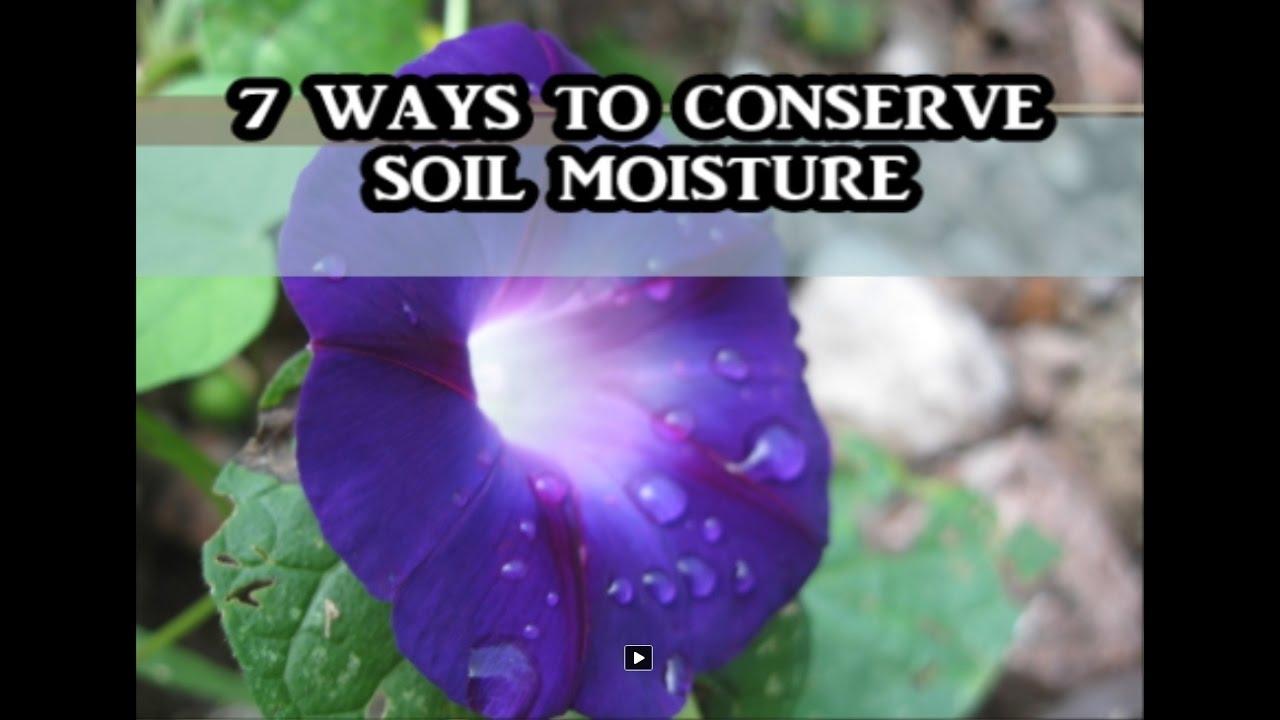 name some ways to conserve soil