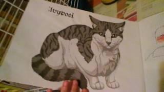 Мои рисунки котов воителей