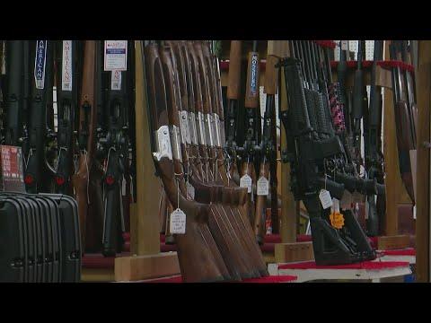What Do Gun Background Checks Actually Check?