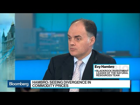 BlackRock's Hambro Sees Divergence In Commodity Prices