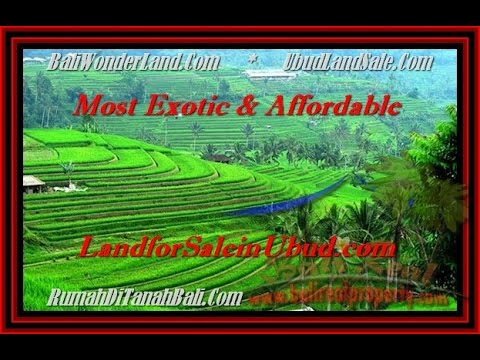 AFFORDABLE LAND FOR SALE IN UBUD - BALI PROPERTY INVESTMENT