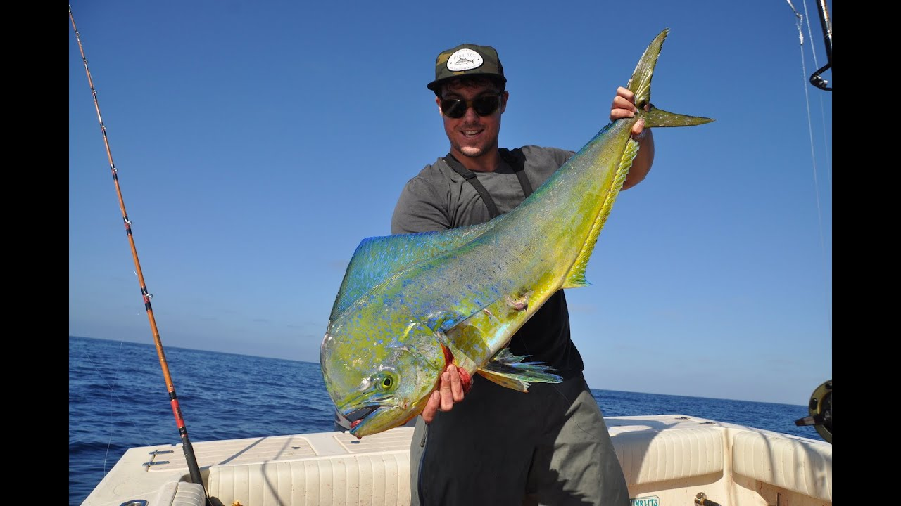 Fishing offshore san diego for dorado and yellowfin tuna 9 for San diego fish report