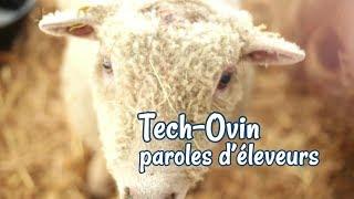 Tech Ovin 2017 - Paroles d'éleveurs (2ème épisode)