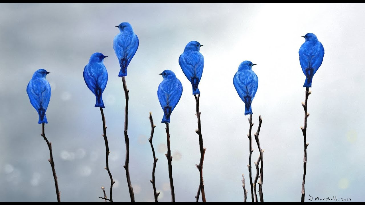 Blue birds ~ Artrage 4 speedpainting