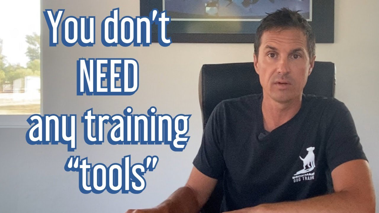 YOU are the only training tool you NEED