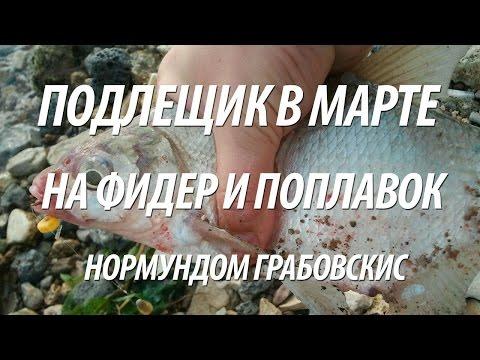 КЛУМБЫ, ЦВЕТУЩИЕ С РАННЕЙ ВЕСНЫ ДО ПОЗДНЕЙ ОСЕНИ ' Дача