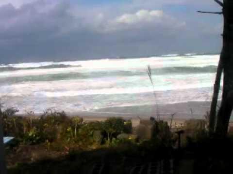 THE GHETTO WEB : 今日の波...