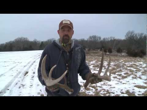 Lee Lakosky's Tips For Shed Hunting
