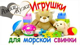 Лучшие игрушки для морской свинки. Делаем сами. Легко! Toys for guinea pig.