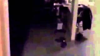Testing My Doberman Attack Commands! Great Guard Dog!