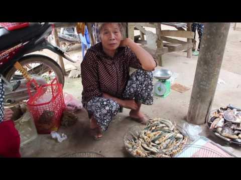 Một phiên chợ quê ở Yên Thành - Nghệ An : Thu thuế kiot dân nhưng không xây dựng