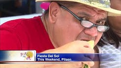 Fiesta Del Sol continues in Pilsen