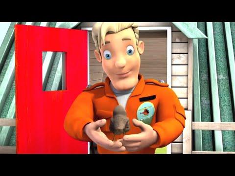 Sam a tűzoltó   A legjobb madár barátom   1 órás összeállítás   Sam a tűzoltó Mese