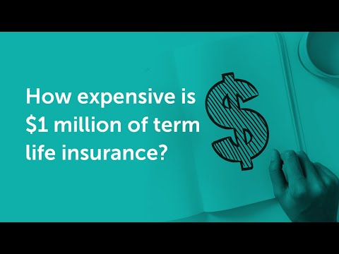 How Much Is One Million Dollars Of Life Insurance? | Quotacy Q&A Fridays