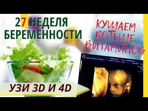 27 неделя беременности. Развитие плода. УЗИ 3D и 4D. Что чувствует беременная  Как выглядит ребенок