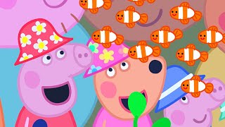 Peppa Pig Full Episodes | The Great Barrier Reef | Cartoons for Children