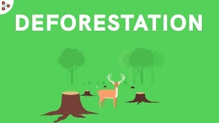 Conservation of Plants and Animals - Introduction - CBSE Class 8